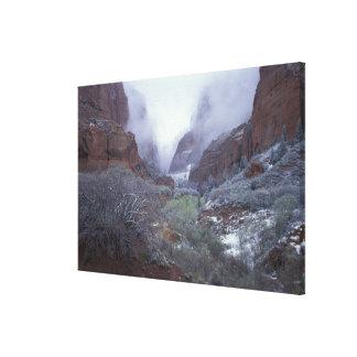 NA、米国、ユタ、Zion NPの春の雪の嵐、 キャンバスプリント