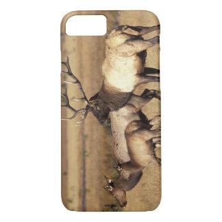 NA、米国、ワイオミングのイエローストーン国立公園 iPhone 8/7ケース