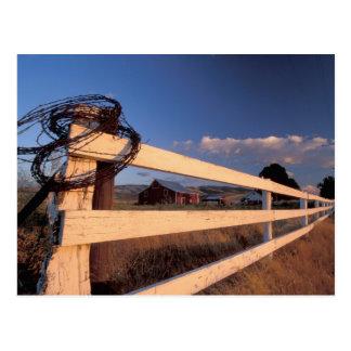 NA、米国、ワシントン州、Walla Wallaの近くの、塀、 ポストカード