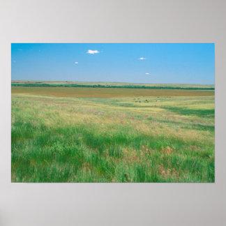 NA、米国、NE。 牧草地はOgallalaにとの近づきます ポスター