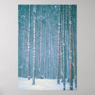 NA、米国、WY。 Snowyの冬場面の中の ポスター