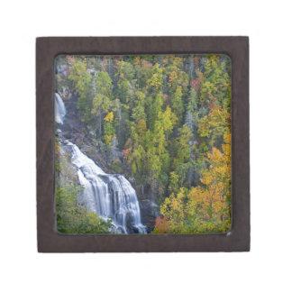 Nantahalaの国民のワイルドウォーターの滝 ギフトボックス