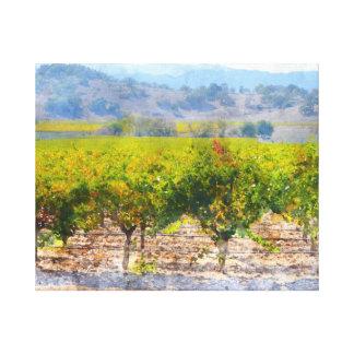Napa Valleyのブドウ園 キャンバスプリント