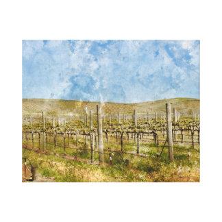 Napa Valleyの美しいブドウ園 キャンバスプリント