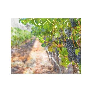 Napa Valleyカリフォルニアのつる植物のブドウ キャンバスプリント