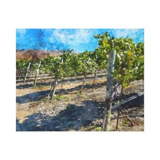 Napa Valleyカリフォルニアのブドウ園 キャンバスプリント
