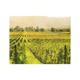 Napa Valleyカリフォルニアの秋のブドウ園 キャンバスプリント