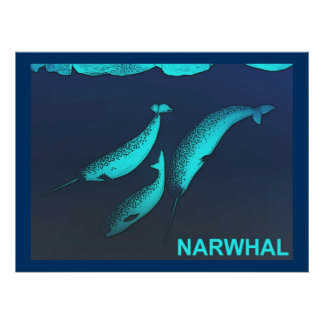 Narwhal ポスター