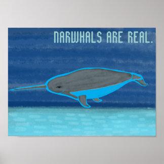 Narwhalsは実質です ポスター
