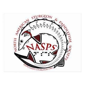NASPS.orgのロゴの商品 ポストカード
