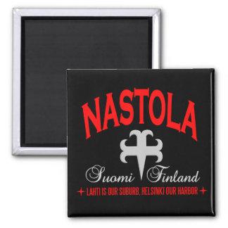 Nastolaの磁石 マグネット