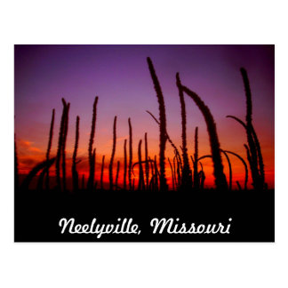 Neelyvilleミズーリ ポストカード