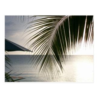 Negrilのビーチ場面 ポストカード