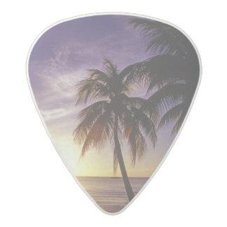 Negril、ジャマイカ3のビーチ アセタール ギターピック