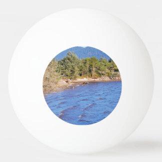 Nehalem湾-オレゴンの州立公園のシカ 卓球ボール