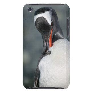 Neko港南極大陸のGentooのペンギン Case-Mate iPod Touch ケース