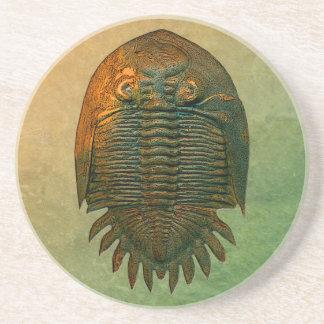 Neometacanthus化石のTrilobiteのコースター コースター