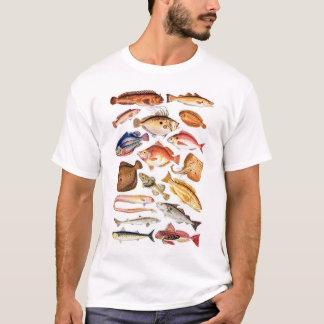 newartsweb -そう多くの魚、そう少し時間 tシャツ