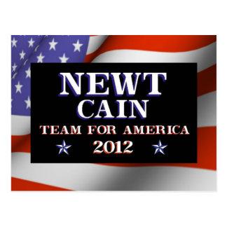 NEWTカイン-アメリカ2012年のためのチーム ポストカード