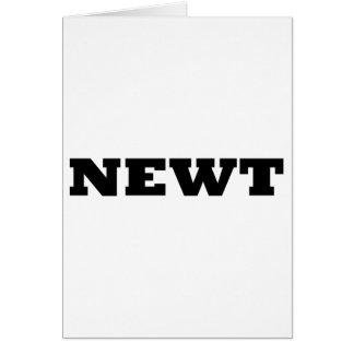 Newt カード