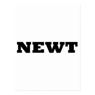 Newt ポストカード