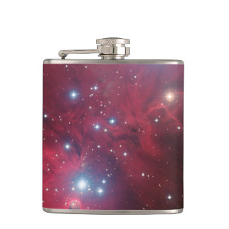 NGC 2264およびクリスマスツリーの集り フラスク