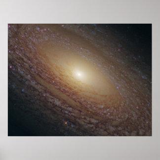 NGC 2841の渦状銀河 ポスター