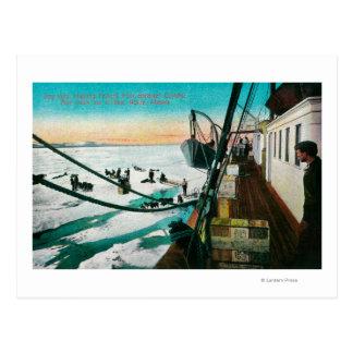Nomeの貨物の荷を下すアラスカの汽船Corwin ポストカード
