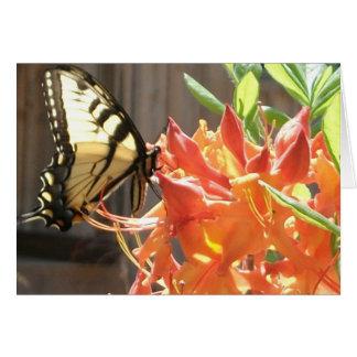 Notecardのアゲハチョウの蝶炎の先住民のツツジ カード