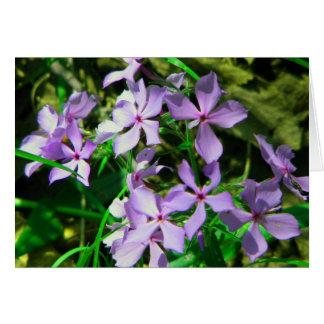 Notecard: オオシカの川に沿う花 カード
