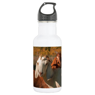 Nubianのヤギ ウォーターボトル