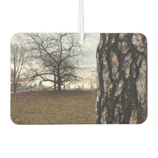 NYCニューヨークシティセントラル・パークの木の日の出の写真 カーエアーフレッシュナー