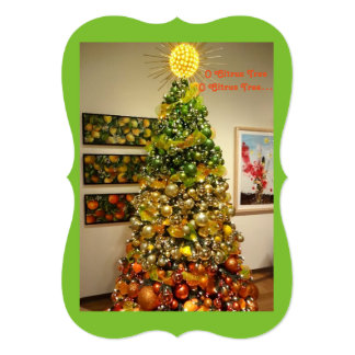 O Citrus Tree Photo Christmas Card From Florida カード