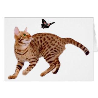 Ocicatの猫及び蝶 カード