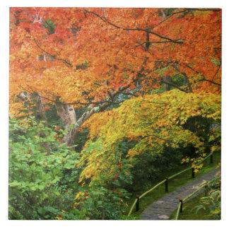 Okochi Sanso、Arashiyama、京都、日本2 タイル