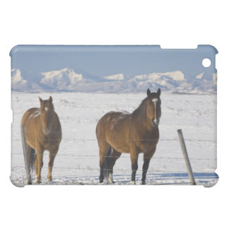 okotoks、アルバータ、カナダ iPad mini カバー