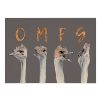 OMFG Ostriches ポスター