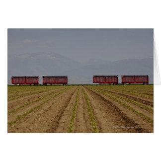 openトラック農産物を運ぶために使用された味方しました カード