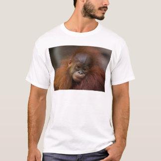 Orangutangのベビー Tシャツ