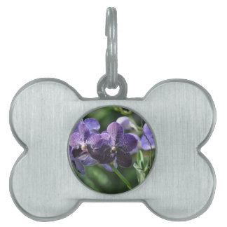 Orchidaeの紫色 ペットネームタグ