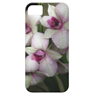 OrchideasのiPhoneの穹窖 iPhone SE/5/5s ケース