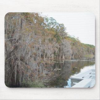 orlando湖のヌマスギ マウスパッド