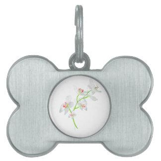 Orquideasの隔離された花 ペットネームタグ