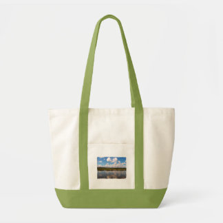Ossabawの反射のバッグ トートバッグ