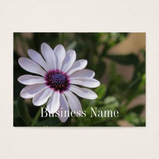 Osteospermumの名刺 名刺