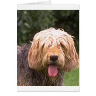 otterhound.png カード