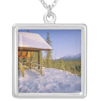 ovelooking冬のUSFS Schnaussの小屋のレンタル シルバープレートネックレス