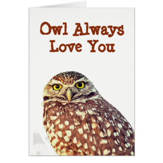 Owl Always Love You All Occasion Greeting Card カード