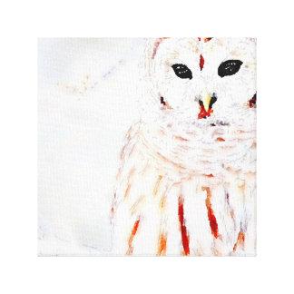 Owl Canvas キャンバスプリント