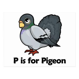 Pはハトのためです ポストカード